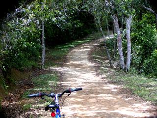 Passeio de bicicleta para Lopes Mendes