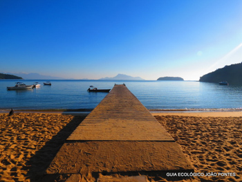 Trilha T10 – Praia Grande de Palmas - Ilha Grande - RJ