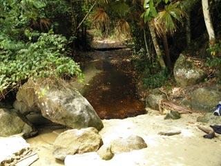 Córrego da praia da bica - enseada do Abraão - Ilha Grande - RJ