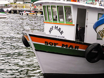 Barcos da Enseada de Araçatiba - Ilha Grande