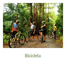 Passeios de bicicleta - Ilha Grande - RJ