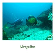 Mergulho - Ilha Grande - RJ