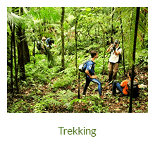 Trilhas e Trekking - Ilha Grande - RJ