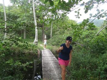 Trilha T11 – Caminho da Aroeira - Ilha Grande - RJ