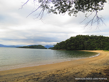 Trilha T04 - Freguesia de Santana à Bananal - Ilha Grande - RJ