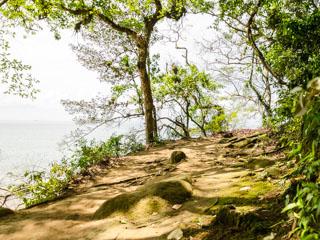 Final da trilha para a Praia de Araçatibinha - Ilha Grande