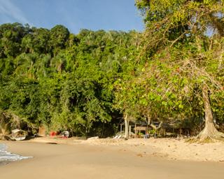 Generosa faixa de areia e muita sombra garantida na Praia Brava de Palmas