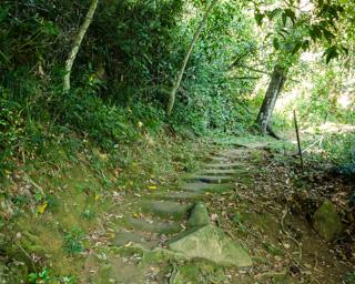 A partir da Praia Grande de Palmas existem várias trilhas curtas e outras mais longas