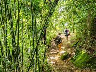A partir da Praia de Itaóca se inicia o Caminho da Aroeira para Lopes Mendes